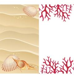 Summer background with seashells vector image