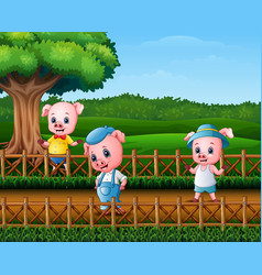 three little pigs doing activity vector image