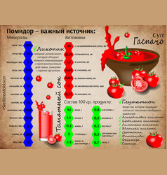 Vitamins in tomatoes vector