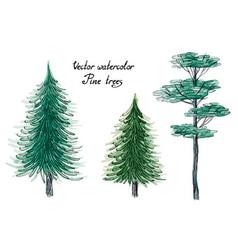 watercolor pine trees vector image vector image