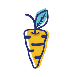 Carrot vegetable icon image vector