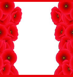 Red corn poppy border vector