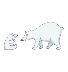 set polar bears vector image