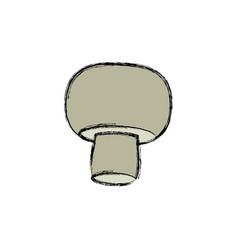 Whole ripe mushroom champignon product food vector