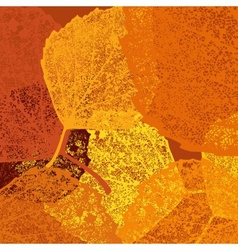 Dry autumn leaves template EPS 10 vector image