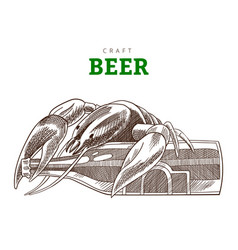 beer bottle and cancer sitting on a bottle craft vector image