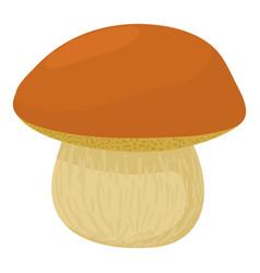 Boletus edulis icon cartoon style vector
