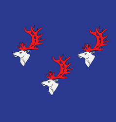 Flag of umea is a capital city of vasterbotten vector