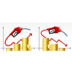 fuel handle pump nozzle with hose like price rises vector image