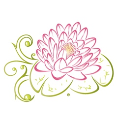 Lotus floral element vector image