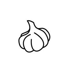 web line icon garlic black on white background vector image