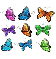 Nine colorful butterflies vector