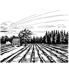 Agricultural landscape with house vector