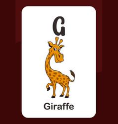 Animal alphabet flashcard - g for giraffe vector