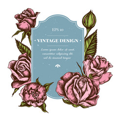 badge design with colored roses vector image