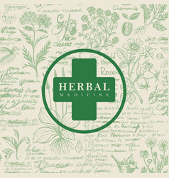 Banner for herbal medicine in retro style vector