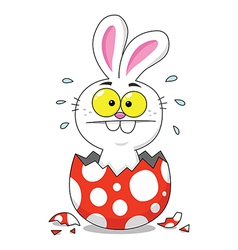 Easter Bunny Inside Egg vector image