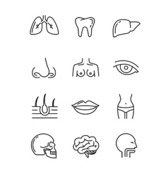 Flat medical icons vector