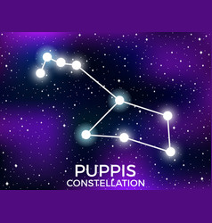 puppis constellation starry night sky cluster of vector image
