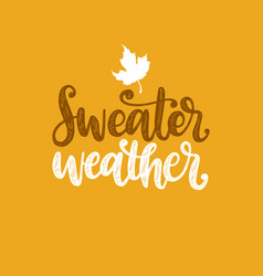 sweater weather hand lettering maple leaf vector image