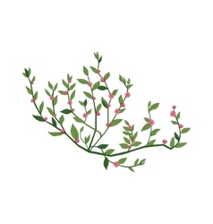 Tiny Pink Wild Flower Hand Drawn Detailed vector image vector image