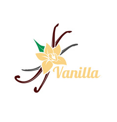 Vanilla flower and pods icon silhouette vector