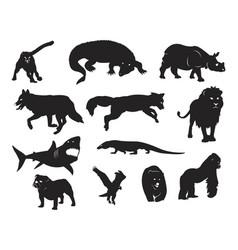 Wild carnivore hunter animal wildlife predator vector