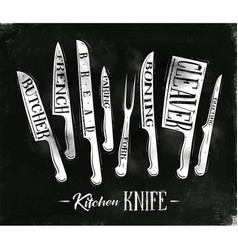 kitchen meat cutting knifes poster vector image