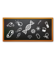 realistic black board with science and micro vector image