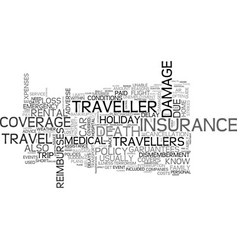 a short guide to travel insurance text word cloud vector image vector image