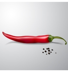 red hot chili pepper isolated vector image vector image