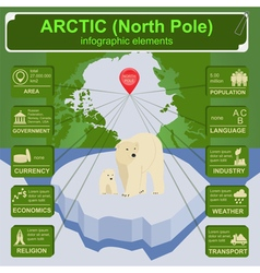Arctic North Pole infographics statistical data vector