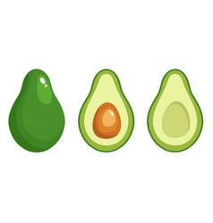 Avocado fruit icon on white vector