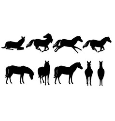 black silhouette set brown horse wild or vector image