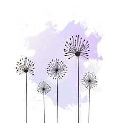 flowers background isolated on white vector image