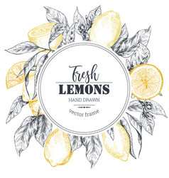 frame with hand drawn fresh lemon tree vector image
