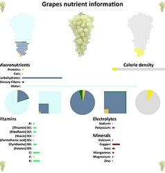 Grapes nutrient information vector