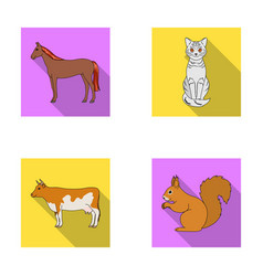 Horse cow cat squirrel and other kinds of vector