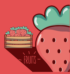 Strawberries inside wooden box vector