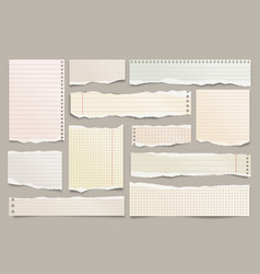 colored ripped lined paper strips collection vector image