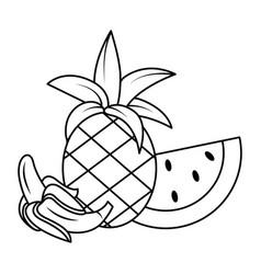 Delicious fruits cartoon vector
