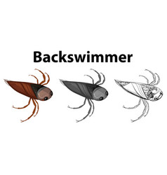 doodle character for backswimmer bug vector image