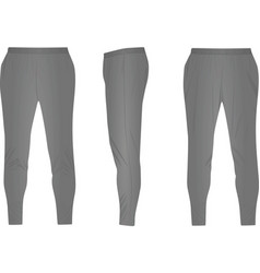 Gray tracksuit bottom vector