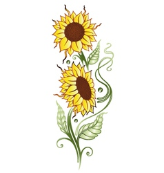 Sun flowers summer time vector