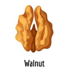 Walnut icon cartoon style vector