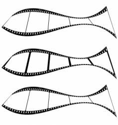 photo film strip fish vector image vector image