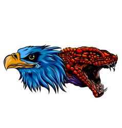 bald eagle head can vector image