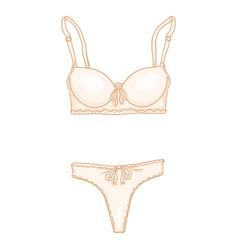 cartoon beige women lingerie female underwear bra vector image