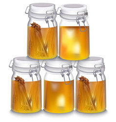 honey jar realistic cinnamon vector image