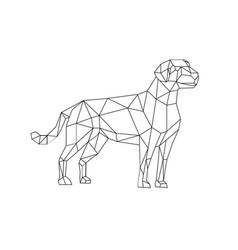 Labrador wireframe low polygon line art vector